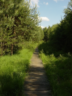 Borkovice Marshland Educational Path (5.5 km)